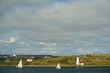 Halifax, Nova Scotia, Canada: Sailboats racing in Halifax Harbor with the Georges Island lighthouse and Fort Charlotte in the background.