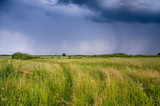 Storm clouds over the green field, Rain summer clouds. - 236488690