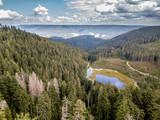 Luftaufnahmen im Schwazwald / Frühling © Volker Loche