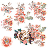 Collection of vector watercolor cosmos flowers in vintage style - 236579487