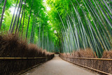 The Bamboo Forest of Arashiyama, Kyoto © Joseph Oropel