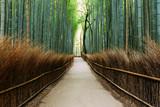 Fototapeta Bambus - The Bamboo Forest of Arashiyama, Kyoto © Joseph Oropel
