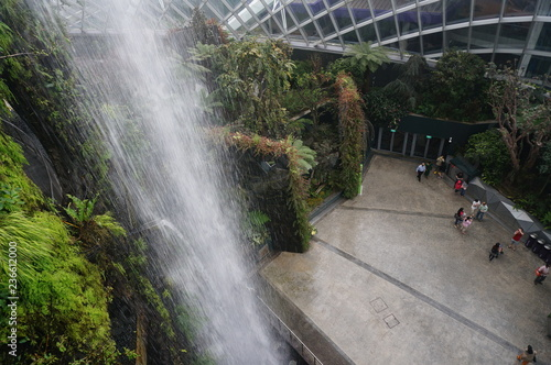 fountain in cloud forest