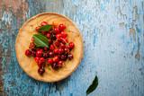 Fresh summer cherry on plate