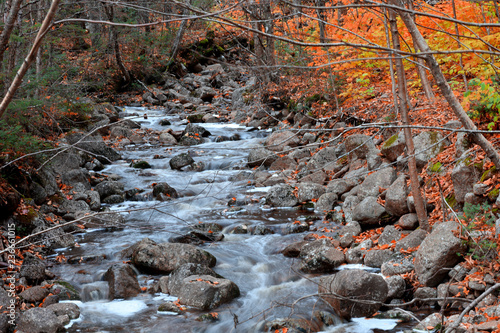 Woda spada w wiejskich Quebec w czasie jesieni