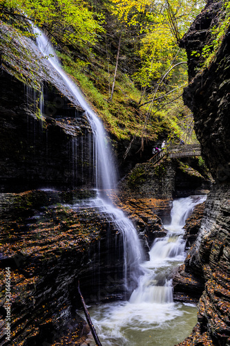 Waterfall and cascade in the Forest, New York - 236665664