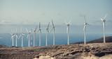 windmill - 236723230