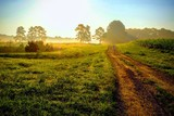 Beautiful bright sunrise with an old country dirt road heading towards the sun. Raleigh North Carolina - 236766251