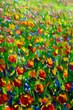 Wildflowers oil painting Flower field
