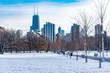 Snow Covered Park in Chicago with Skyline