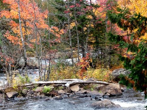 Foto Murales Rivière au milieu d'une montagne en automne