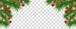 Christmas and happy New Year banner with Christmas tree branches and holly berries on transparent background. Holidays decoration. Vector illustration. - 236828896