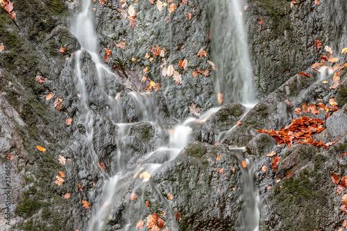 Cascade du Bayehon - 236850828