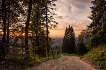 Hochgrat, Alps, Germany