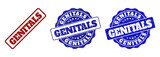 GENITALS grunge stamp seals in red and blue colors. Vector GENITALS marks with grunge style. Graphic elements are rounded rectangles, rosettes, circles and text captions.