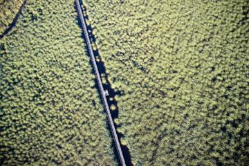 Aerial view swamp Viareggio