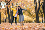 Pretty woman and teen girl are posing with bunch of maple's leaves in autumn park. Beautiful landscape at fall season. - 236943235