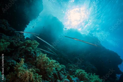 Underwater Submarine Subsea