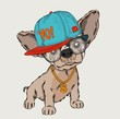 The poster with the image dog portrait in hip-hop hat. Vector illustration. - 237008407