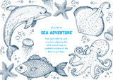 Sea animals hand drawn collection. Sketch illustration. Dolphin, cramp-fish, octopus, starfish, jellyfish and fish illustration. Vintage design template. Undersea world.