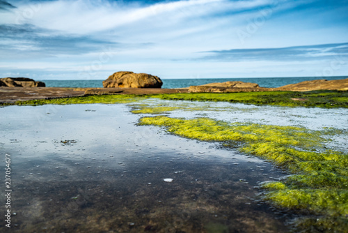Unusual background of stones, algae and water made by nature on the ocean - 237054677