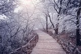 Winter road view in Huangshan National park. - 237063606