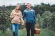 Happy healthy pregnancy and parenting. Portrait of pregnant young blonde Caucasian woman with husband on apple farm. Beautiful expecting mother and future father at countryside, rustic style