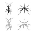 Vector illustration of insect and fly logo. Collection of insect and element stock symbol for web.