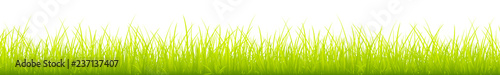 Light Green Meadow Banner - 237137407