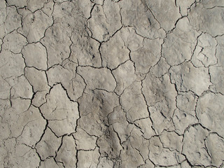 Cracked and Dry EarthTextured Background