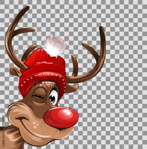 Rudolph Weihnachten transparenter Hintergrund - 237193099