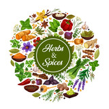 Herbs and species icon with seasoning for cooking - 237230205