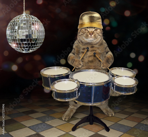 The cat musician in a golden cap plays the drums near a mirror ball on the stage.