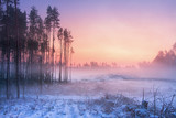 Winter nature at dawn