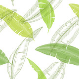 Banana palm leaf graphic color sketch seamless pattern background illustration vector - 237316861