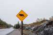 moose crossing sign on side of road
