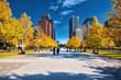 Marunouchi, Tokyo's Central Business District, in autumn - 237320820