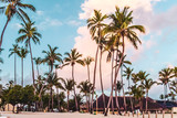 Bavaro Beaches in Punta Cana, Dominican Republic - 237322097