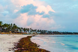 Bavaro Beaches in Punta Cana, Dominican Republic - 237322211