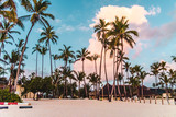 Bavaro Beaches in Punta Cana, Dominican Republic - 237322678