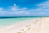 Bavaro Beaches in Punta Cana, Dominican Republic - 237325047