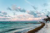 Bavaro Beaches in Punta Cana, Dominican Republic - 237331449