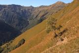 Alpine Landschaft im Valle Albano - 237333831