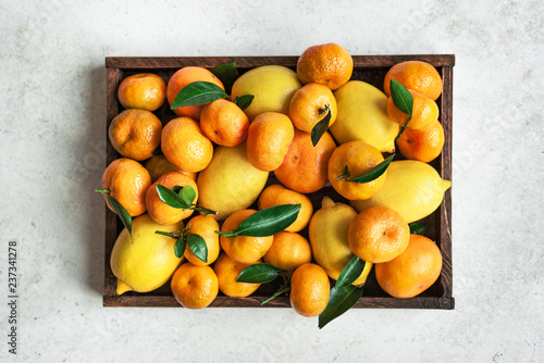 Various citrus fruits - 237341278