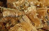 Honey comb at Thailand