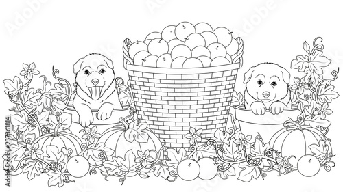 Coloring funny puppies