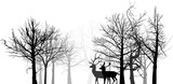 two deer silhouettes between bare trees isolated on white
