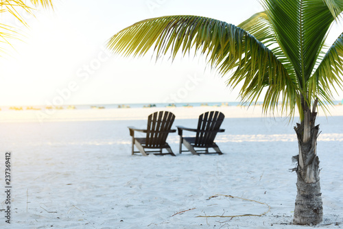 Gentle morning on the beach of the Atlantic Ocean. Palm branches over beach loungers. Florida. USA.
