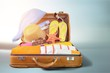 Retro suitcase with travel objects on wooden board on natural