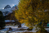 autumn landscape in the French Alps